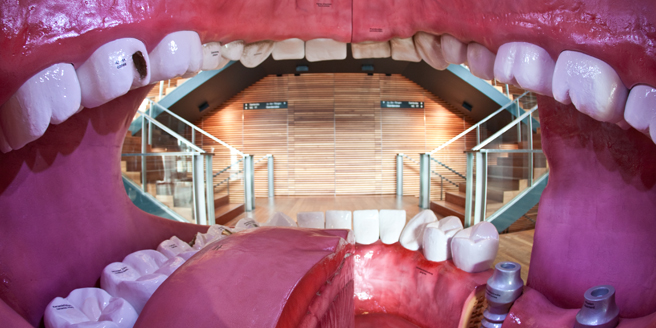 The walk-in oral cavity